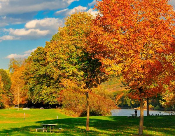 New England in the Fall | Great Rail 1