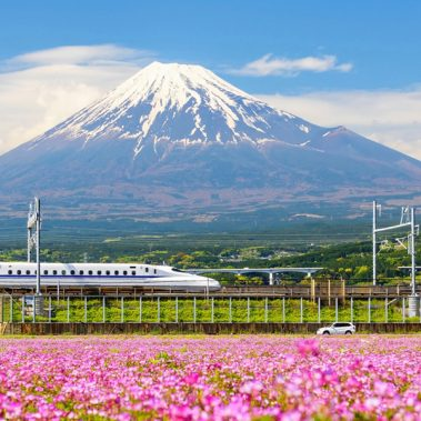 The Golden Route of Japan | Railbookers 1