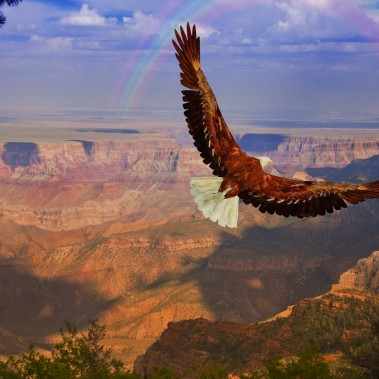 Grand Canyon Discovery with Los Angeles   Railbookers 1