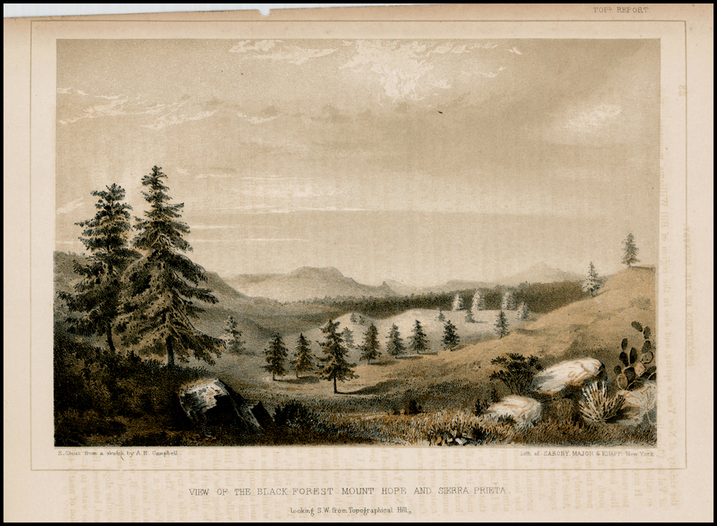 View of the Black Forest Mount Hope and Sierra Prieta.  Looking S. W. from Topographical Hill By U.S. Pacific RR Surveys