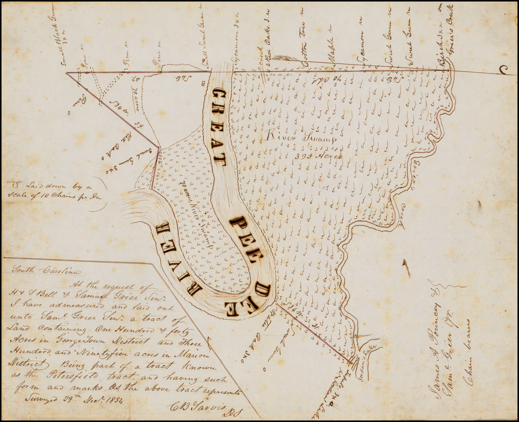 [Manuscript Survey Map: Part of the Petersfield Tract on the Great Pee Dee River, northwest of Conway, South Carolina] By C.B. Sarvis