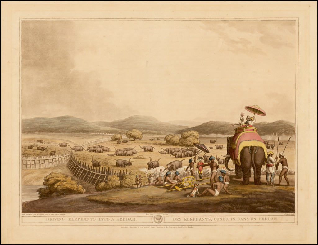 Driving Elephants Into A Keddah |  Des Elephants, Conduits Dans Un Keddah By Samuel Howett / Captain Thomas Williamson