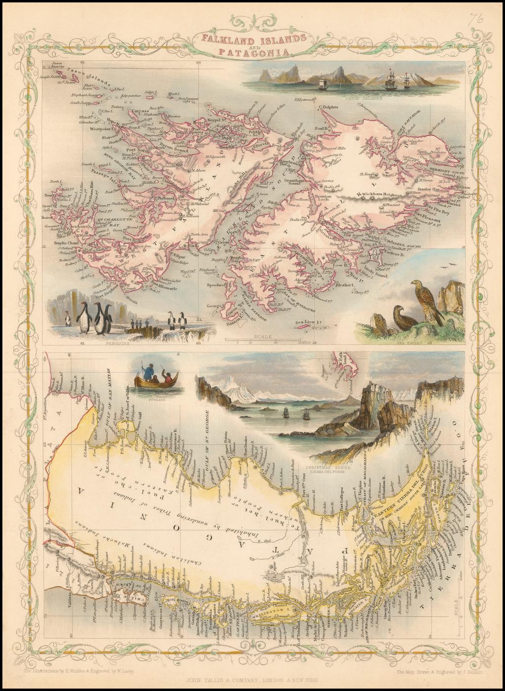 Falkland Islands and Patagonia By John Tallis