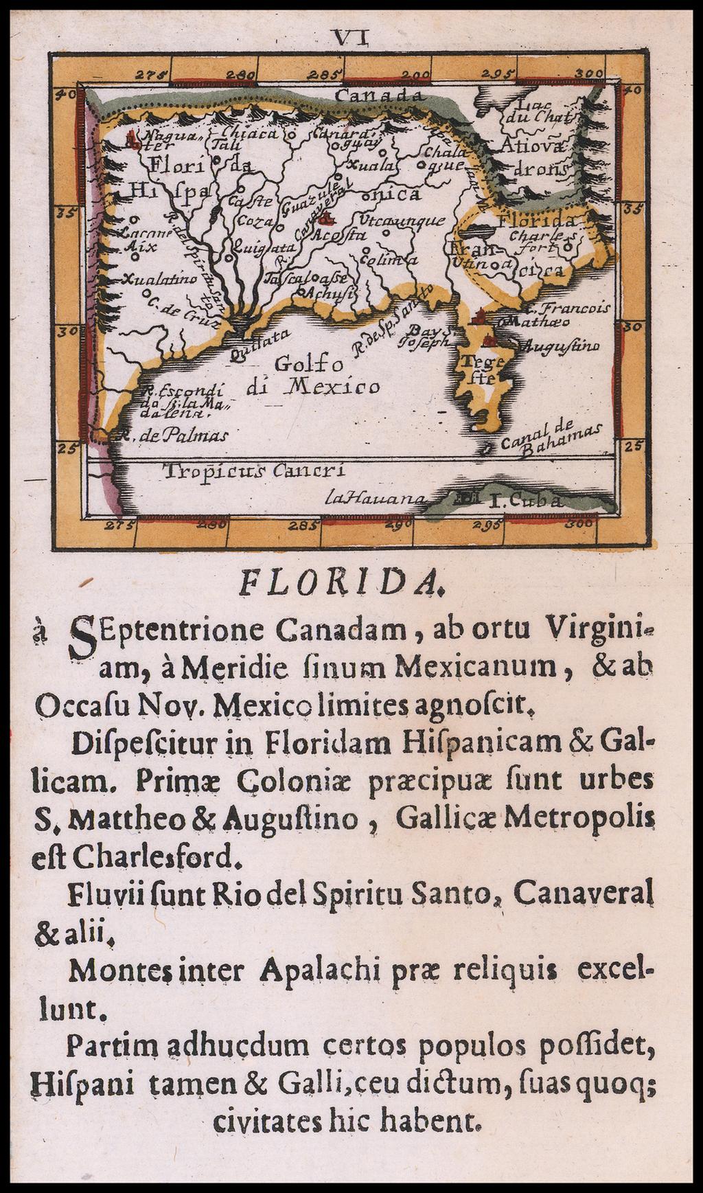 Florida By Johann Ulrich Muller