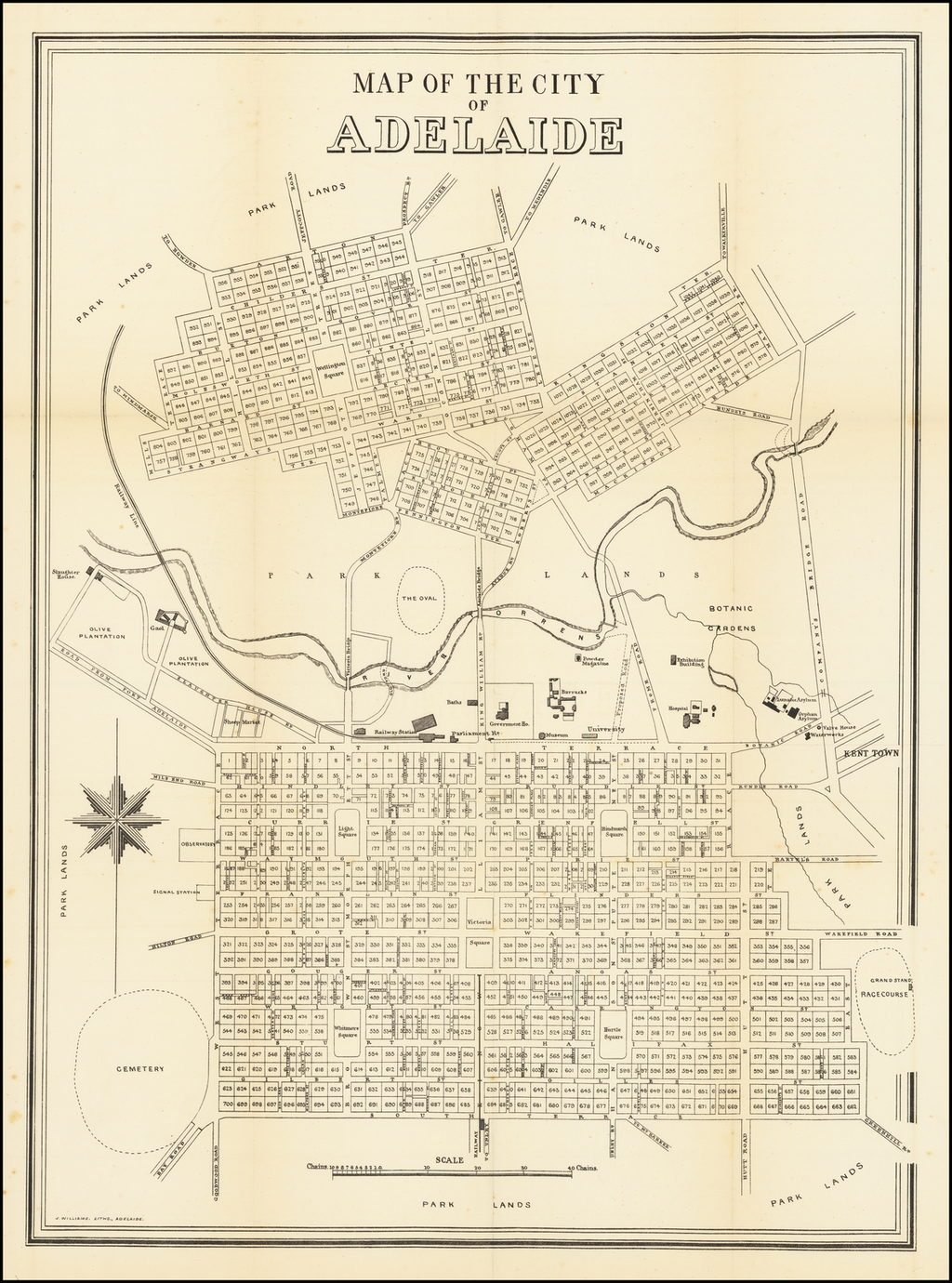Map of the City of Adelaide By J. Williams