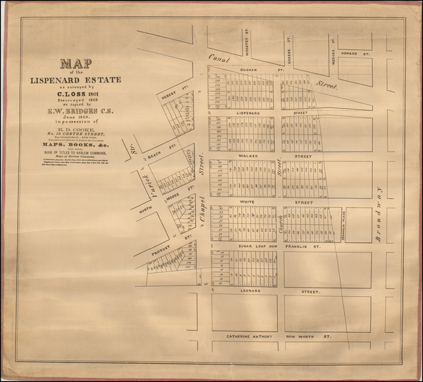 42-New York City Map By Richard D. Cooke