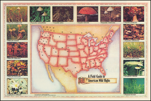 98-United States, Curiosities and Pictorial Maps Map By Louis Crandell