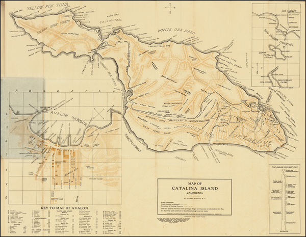 4-California and Other California Cities Map By Harry Wilson