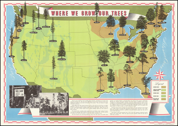 1-United States and Pictorial Maps Map By American Forest Products Industry