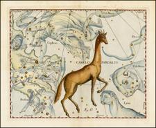 Celestial Maps Map By Johannes Hevelius