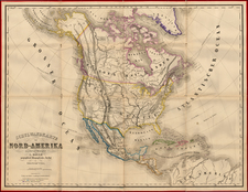 United States and North America Map By Lienhart Holle