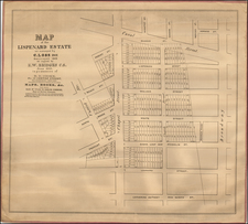 New York City Map By Richard D. Cooke