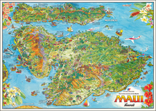 Hawaii and Hawaii Map By Kim Forrest