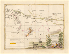Australia & Oceania, Australia, Oceania and New Zealand Map By Antonio Zatta