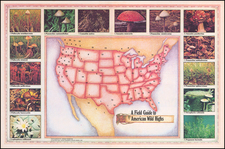 United States, Curiosities and Pictorial Maps Map By Louis Crandell
