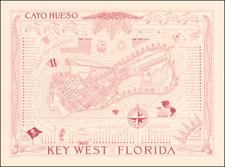 Florida Map By Arthur B. Suchy