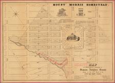New York City Map By Francis Nicholson