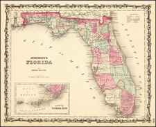 Johnson's Florida By Benjamin P Ward  &  Alvin Jewett Johnson