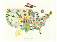 United States and Pictorial Maps Map By Anonymous