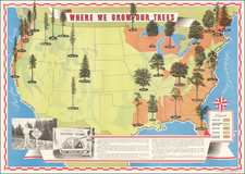 United States and Pictorial Maps Map By American Forest Products Industry