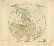 Northern Hemisphere Map By Leonard Von Euler