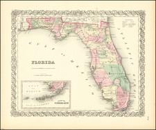 Florida Map By Joseph Hutchins Colton