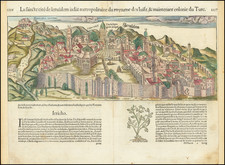 Jerusalem Map By Sebastian Munster