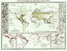 World, World and Curiosities Map By Joseph Meyer