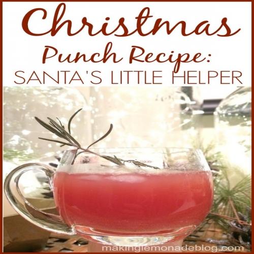 best christmas punch recipe santas little helper - Best Christmas Punch