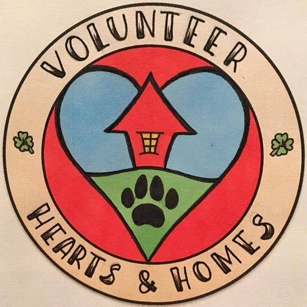 Volunteer Hearts & Homes logo