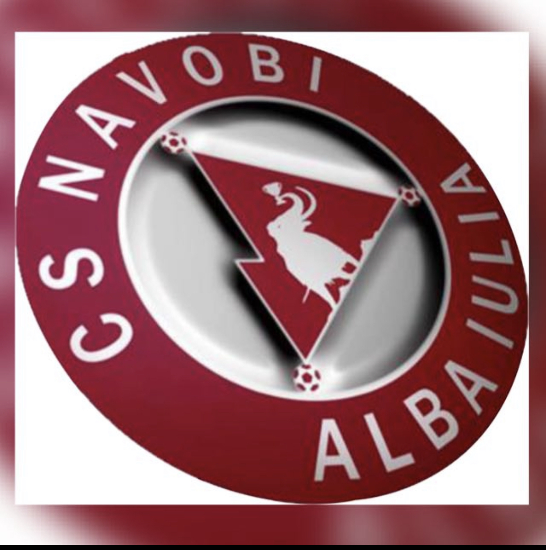 "Asociatia ""Clubul Sportiv Navobi Alba Iulia"" logo"