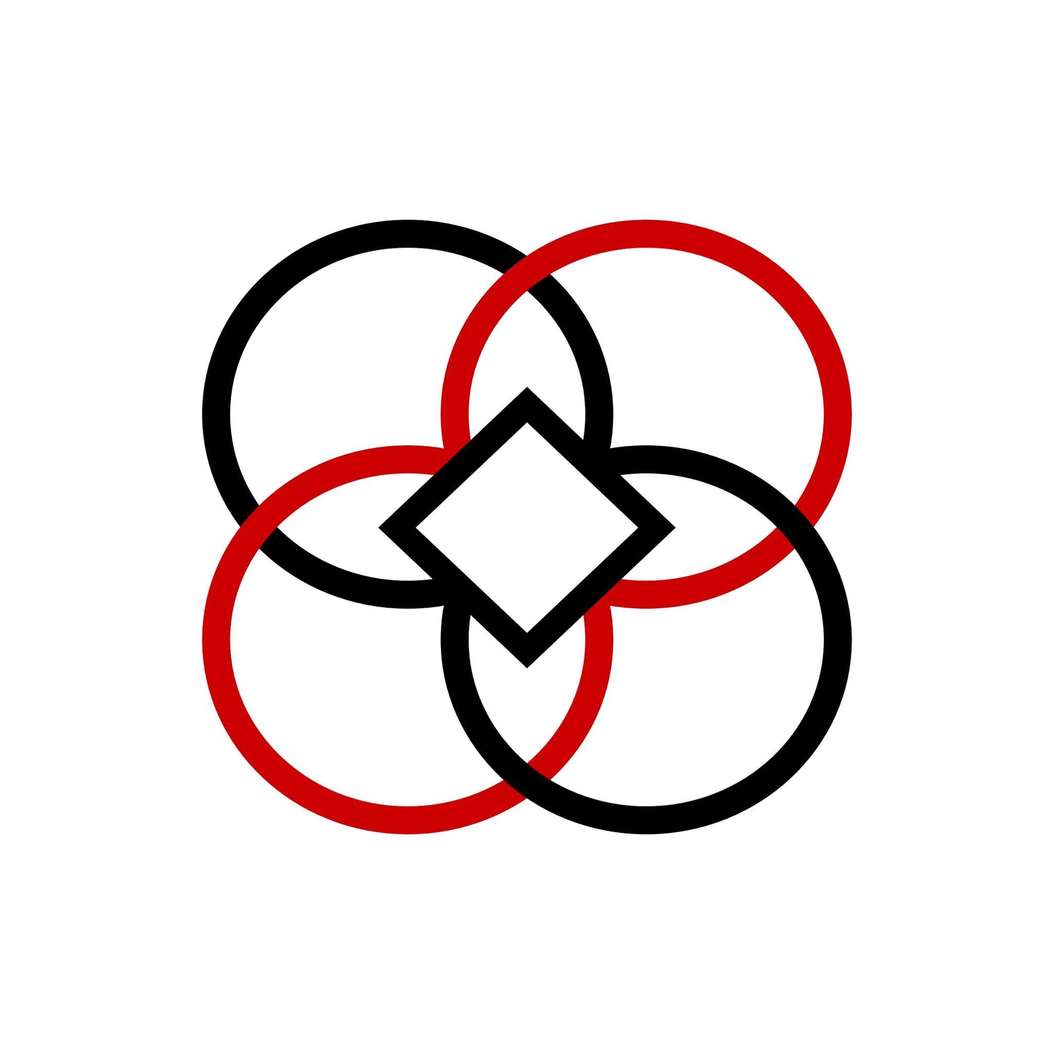 Asociația The Da Vinci System logo