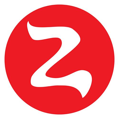 Asociația Zmeii Zburători logo