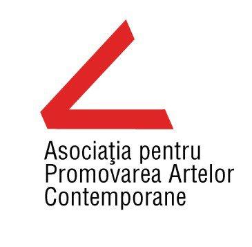 Asociația pentru Promovarea Artelor Contemporane logo