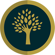 ASOCIATIA ROMANA PENTRU SPRIJIN SI INITIATIVA COMUNITARA logo