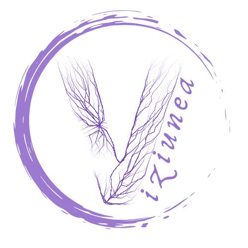 Asociația Societatea Viziunea logo