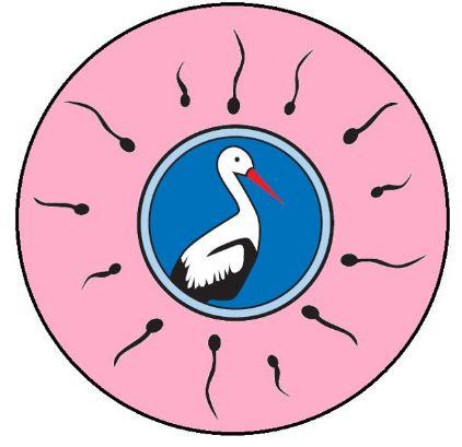 Asociatia SEXUL vs BARZA logo