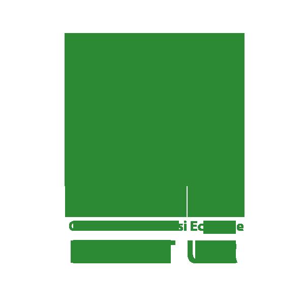 Clubul de Turism și Ecologie ECOTUR logo
