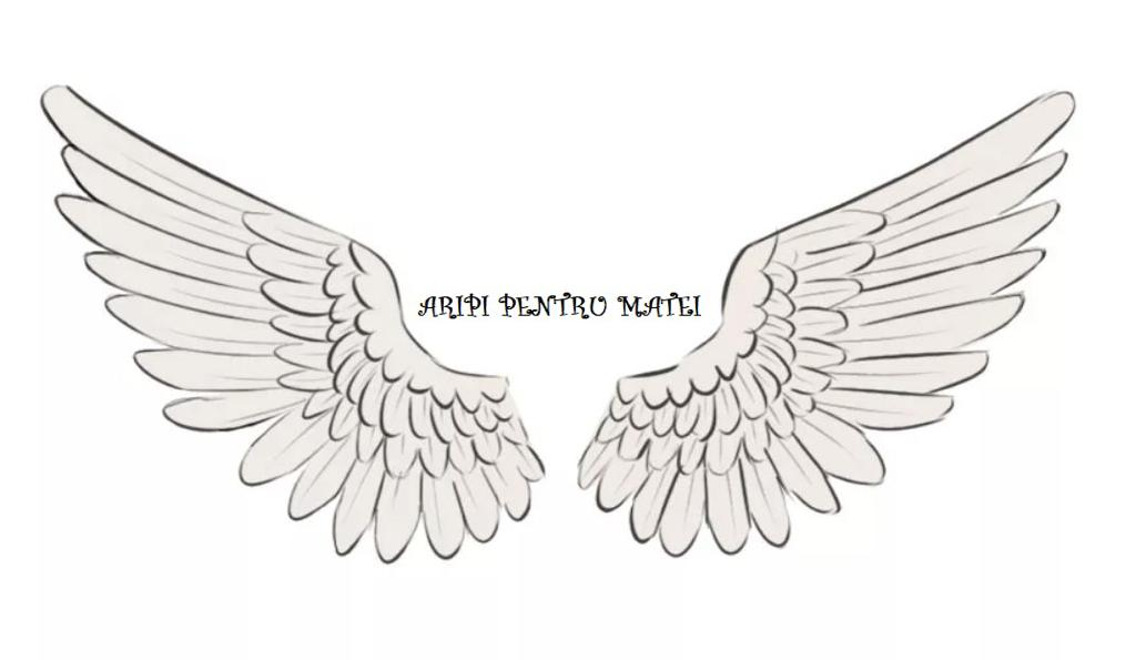 ASOCIATIA ARIPI PENTRU MATEI logo