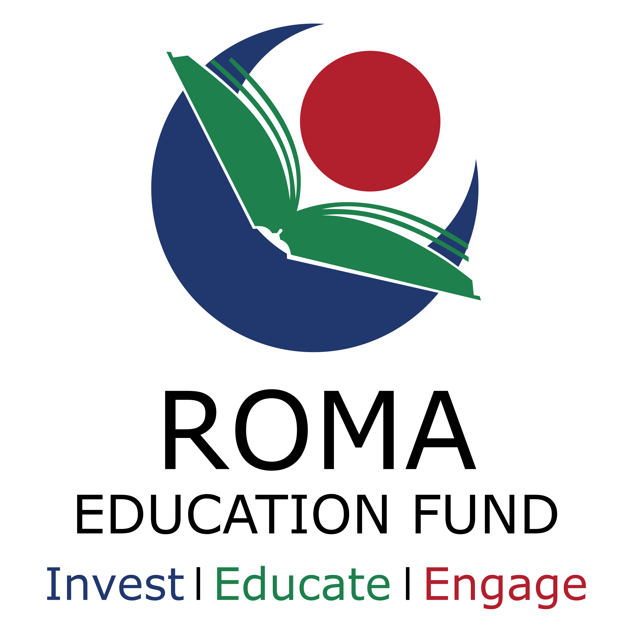 ROMA EDUCATION FUND ROMANIA logo