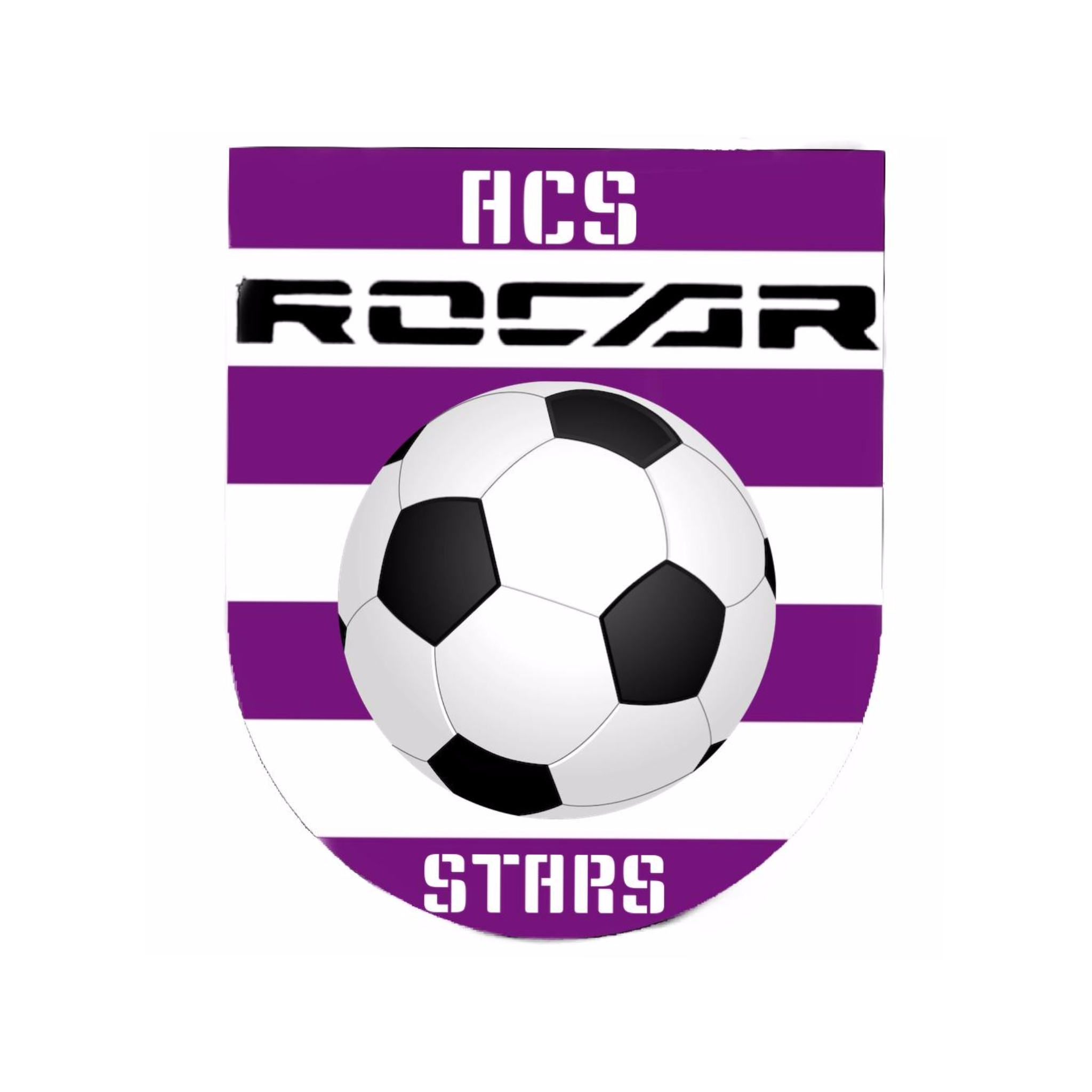 ASOCIAȚIA CLUB SPORTIV ROCAR STARS logo