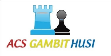 Asociatia Clubul de Sah GAMBIT Husi logo