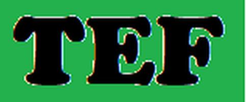 Asociația Traditie Educație Familie logo