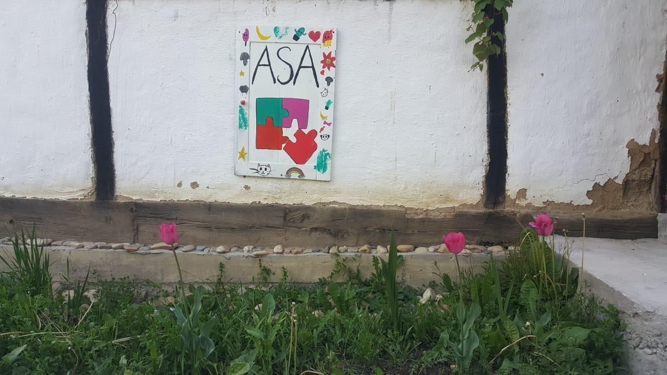 Asociația Social Activ - ASA logo