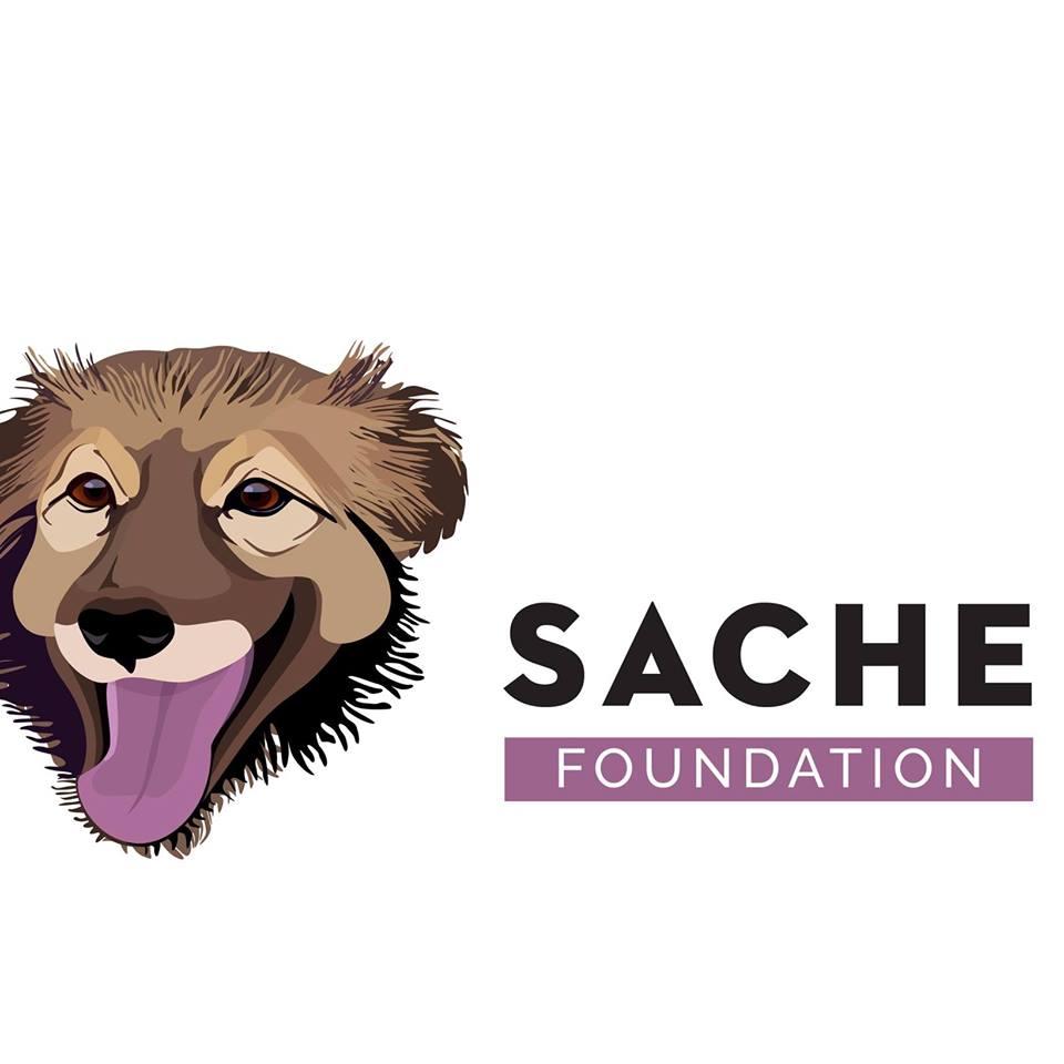 Asociatia Sache logo