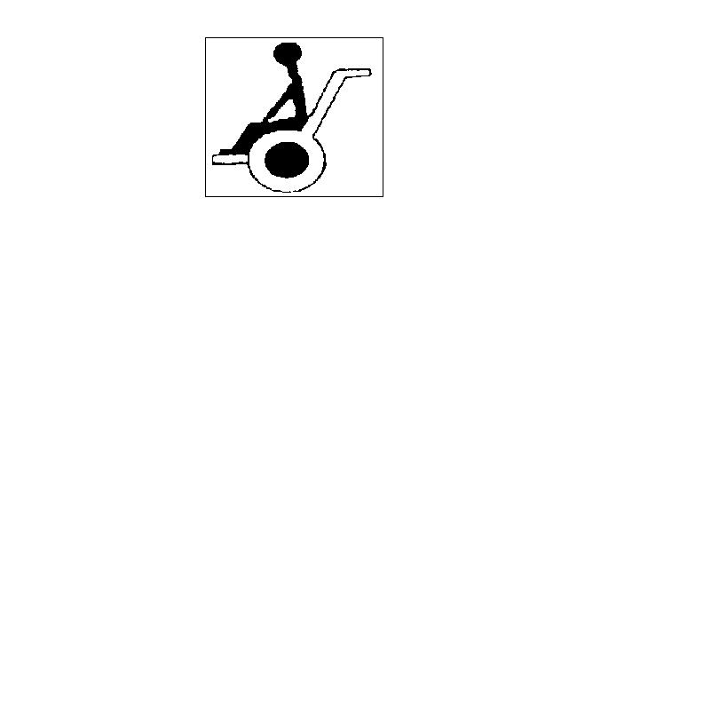 ASOCIATIA PENTRU PROTEJAREA SI AJUTORAREA HANDICAPATILOR MOTOR logo