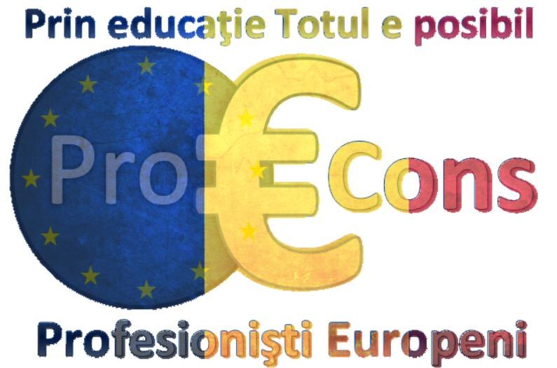 Asociația PROEURO CONS  logo