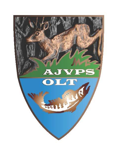 AJVPS OLT logo