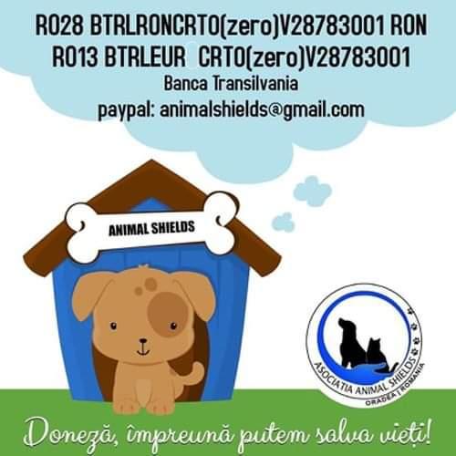 Animal Shields Oradea logo
