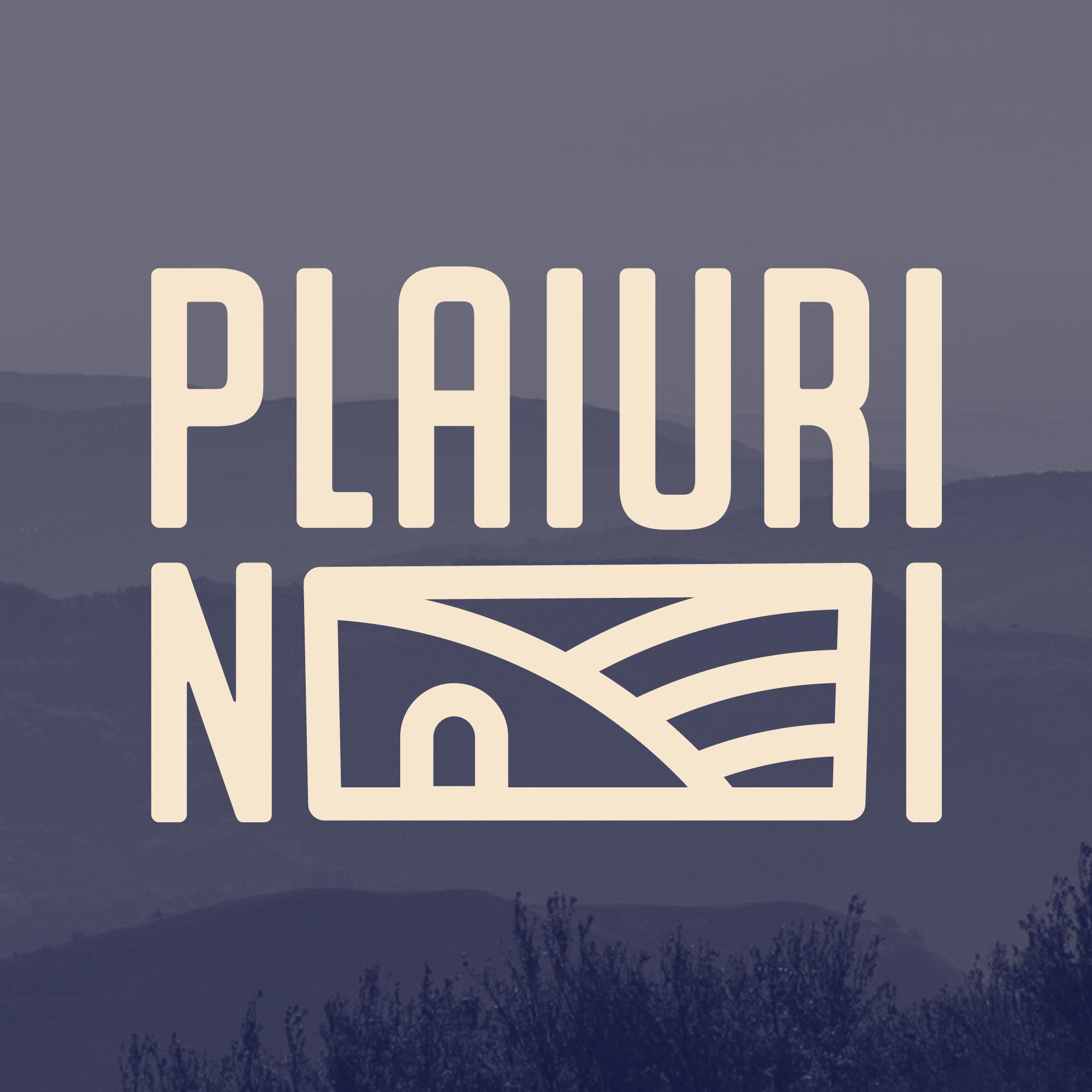 Asociația Plaiuri Noi logo